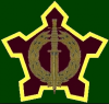 South African Special Forces Brigade.PNG
